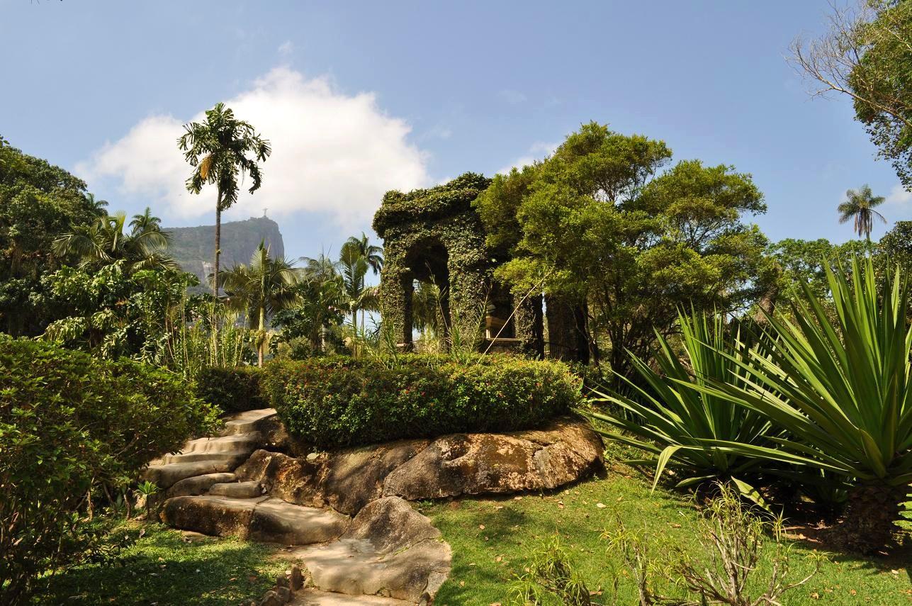 Rio De Janeiro Botanical Gardens Brazil