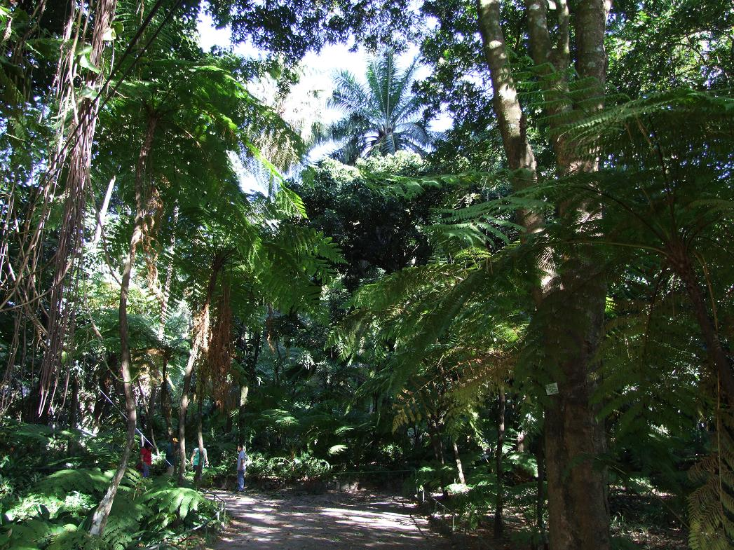 Slika fotografija za moju du u 2 strana 652 for Jardin botanico el ejido